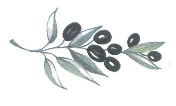 nature - olives